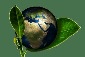 Umwelt Globus
